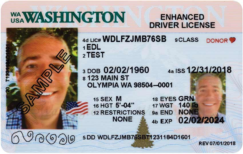 enhanced drivers license wa how long does it take