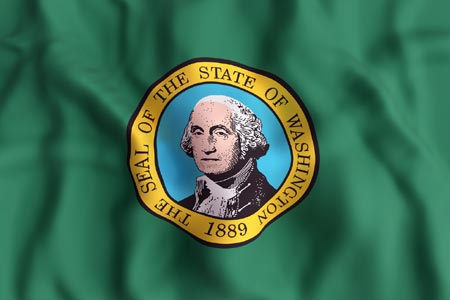 Washington-flag2-resized.jpg