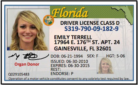 tn drivers license points check