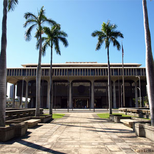 How to Get a Hawaii Notary Surety Bond