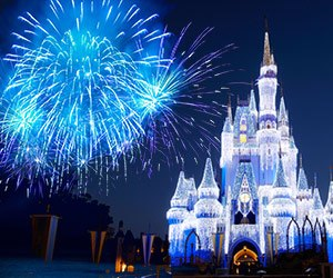 Enjoy the many fun things Orlando has to offer when you attend NNA 2015 Conference.