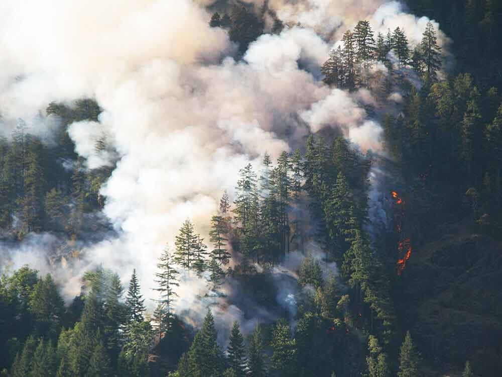 Four Tips For Notaries Dealing With Natural Disasters