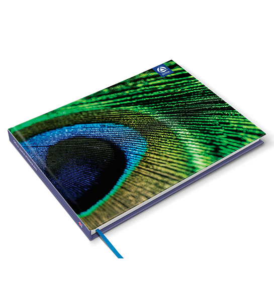 Deluxe Journal - Peacock Feather